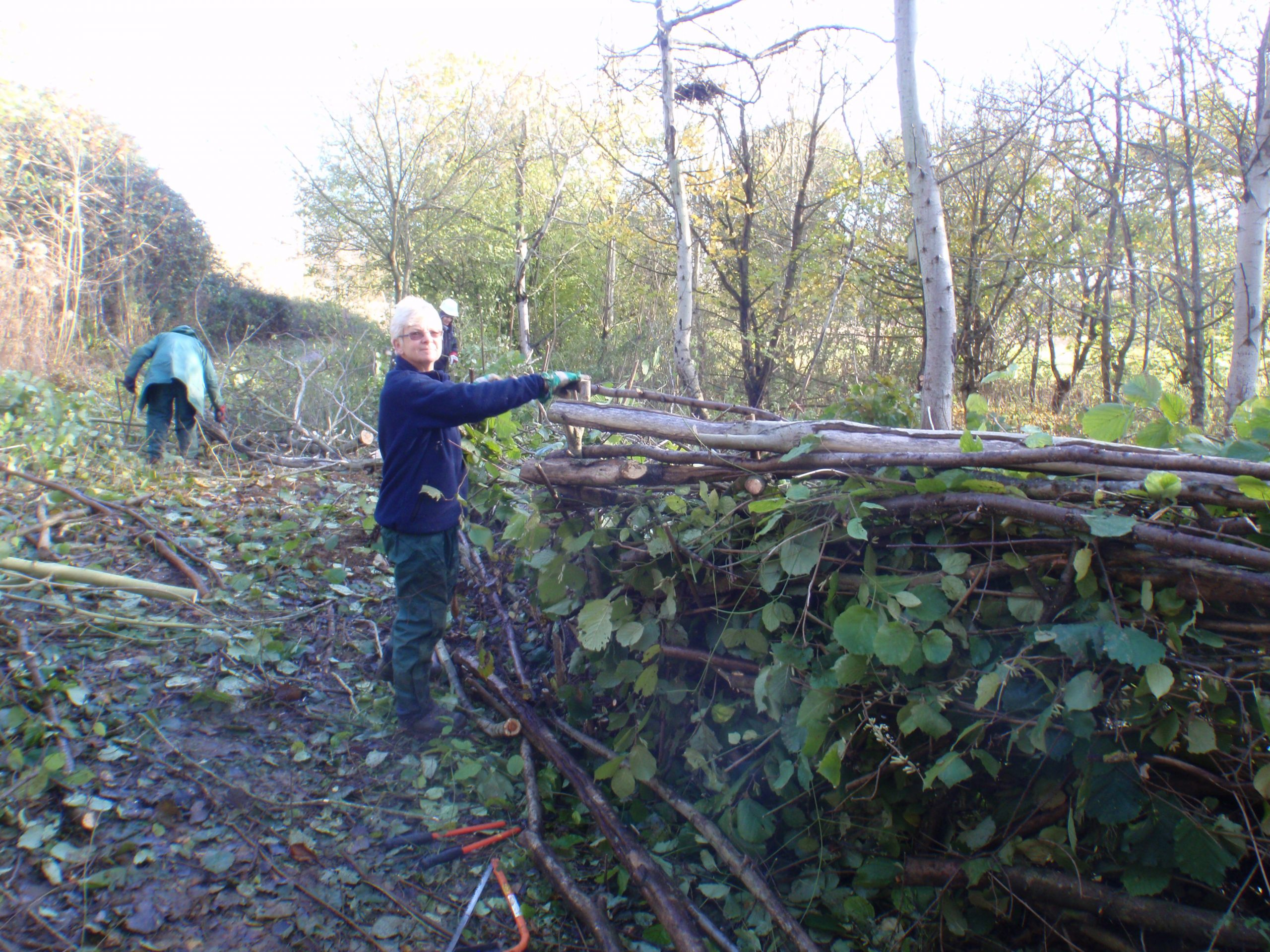 Eileen adding to her dead hedge
