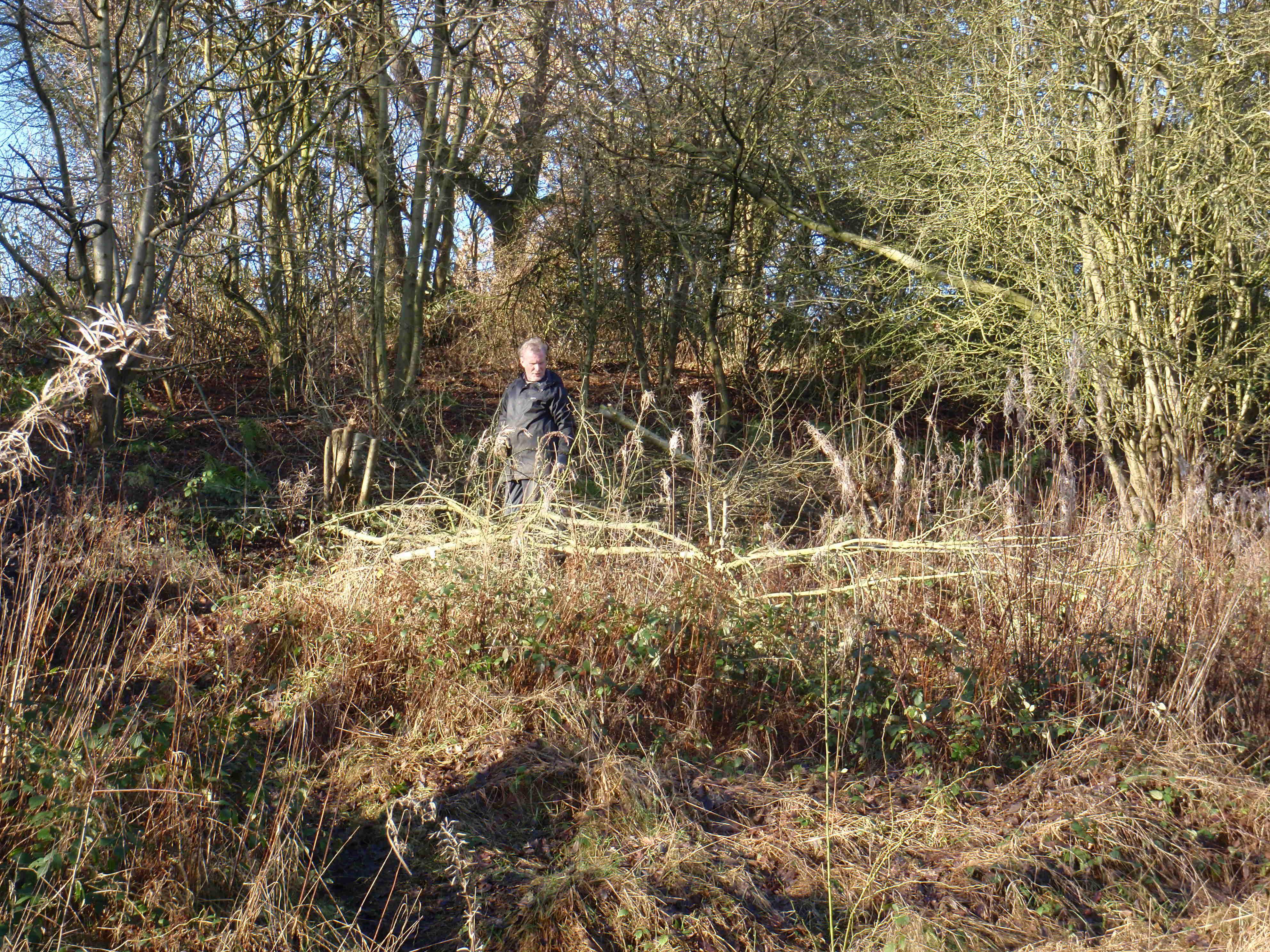 Ken forming a barrier (dead Hedge)