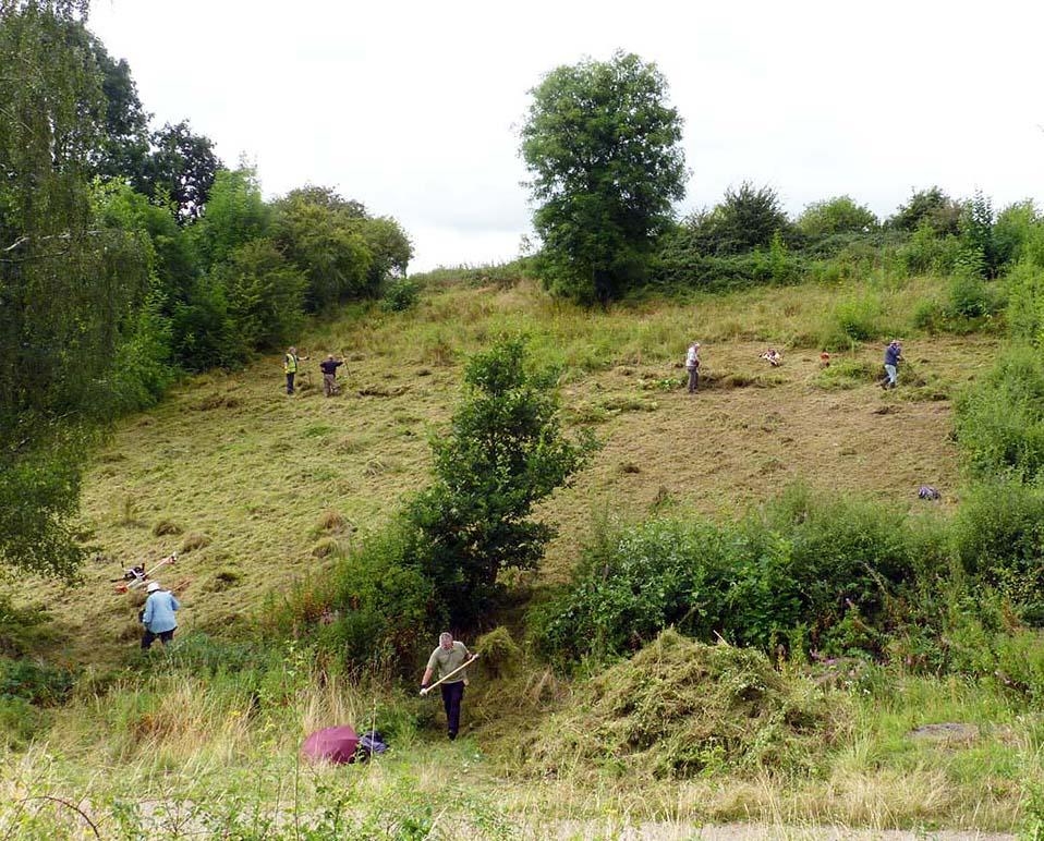 Ashawln-f3w-volunteers-cut-grassland-21-8-16-p-parr