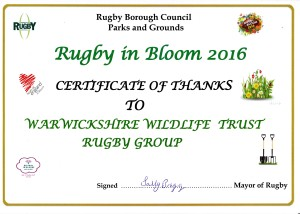 rugby-in-bloom-2016-thanks-wwt