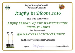 wwt-rugby-gp-rugby-in-bloom-2016